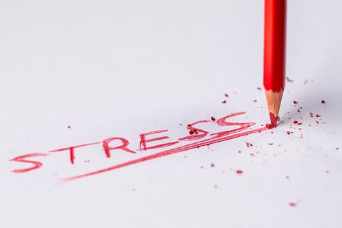stress and our body